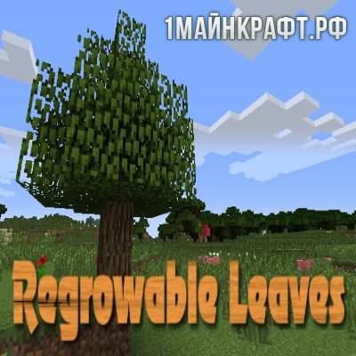 Мод Regrowable Leaves для майнкрафт 1.10.2