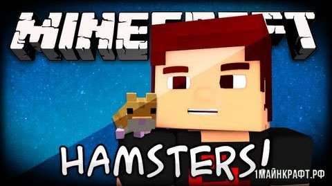 Мод Hamsterrific для Майнкрафт 1.10.2